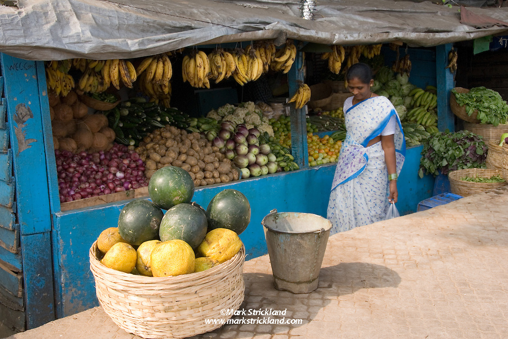 This woman has just completed her morning shopping at a roadside produce stand. Port Blair, Andaman Islands, India