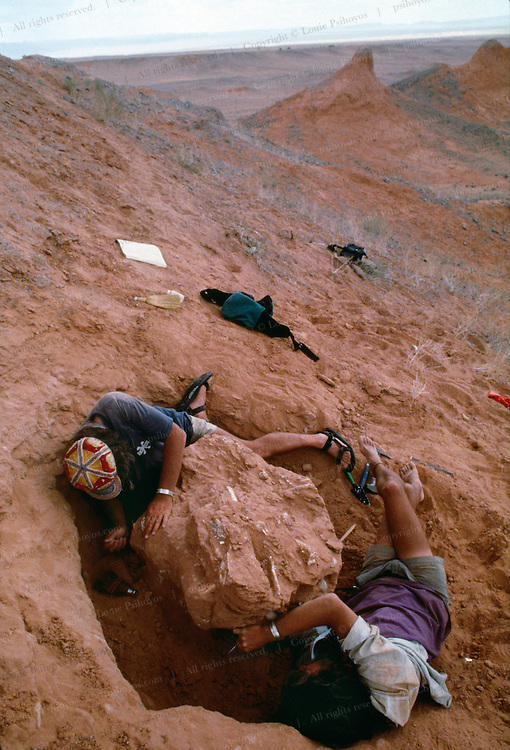 """In the Gobi Desert, Michael Novacek (left) and Mark Norell (right) excavate a specimen they dubbed """"Big Mama"""" , a mother nesting oviraptor that died proctecting her nest that died in the Cretaceous."""