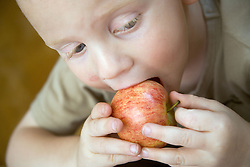Young boy eating an apple,