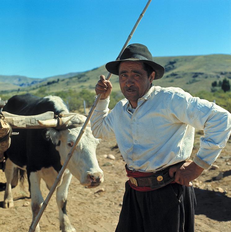 A portrait of a farmer and his cattle in the San Carlos de Bariloche area, Argentina.