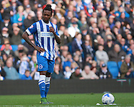 Brighton defender full back Gaetan Bong prepares to take a free-kick during the Sky Bet Championship match between Brighton and Hove Albion and Preston North End at the American Express Community Stadium, Brighton and Hove, England on 24 October 2015. Photo by Bennett Dean.