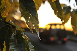 © under license to London News Pictures.  25-10-2010 A land rover drives through rural Leicestershire under the rising sun this Monday morning. After a warm start to Autumn, forecasters predict the cold spell to last until midweek.
