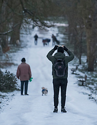 © Licensed to London News Pictures. 08/02/2021. London, UK. A man takes a picture of snow covering Hampstead Heath in north London as large parts of the south of England are blanketed in snowfall. Strong easterly winds from Ukraine and the Black Sea are expected to last in to the middle of the week. Photo credit: Ben Cawthra/LNP