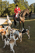 Huntsman Willie Dunn gathers the hounds for the annual blessing marking the start of the Fox Hunting season at Middleton Place Plantation November 27, 2016 in Charleston, SC. Fox hunting in Charleston is a drag hunt using a scented cloth to simulate a fox and no animals are injured.