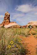 One man hiking The Needles District at Canyonlands National Park near Moab, Utah.