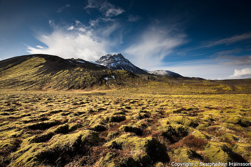 Moss covered lava landscape near mountain Vífilsfell, south west Iceland