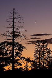 """""""Eerie Tahoe Sky""""- This eerie Tahoe sky with a sliver of a moon was photographed at sunset near Martis Peak, Tahoe."""