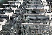 Shopping trolleys Next Home and Garden store, Martlesham, Suffolk, England