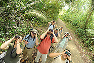 BIRDWATCHING IN PANAMA