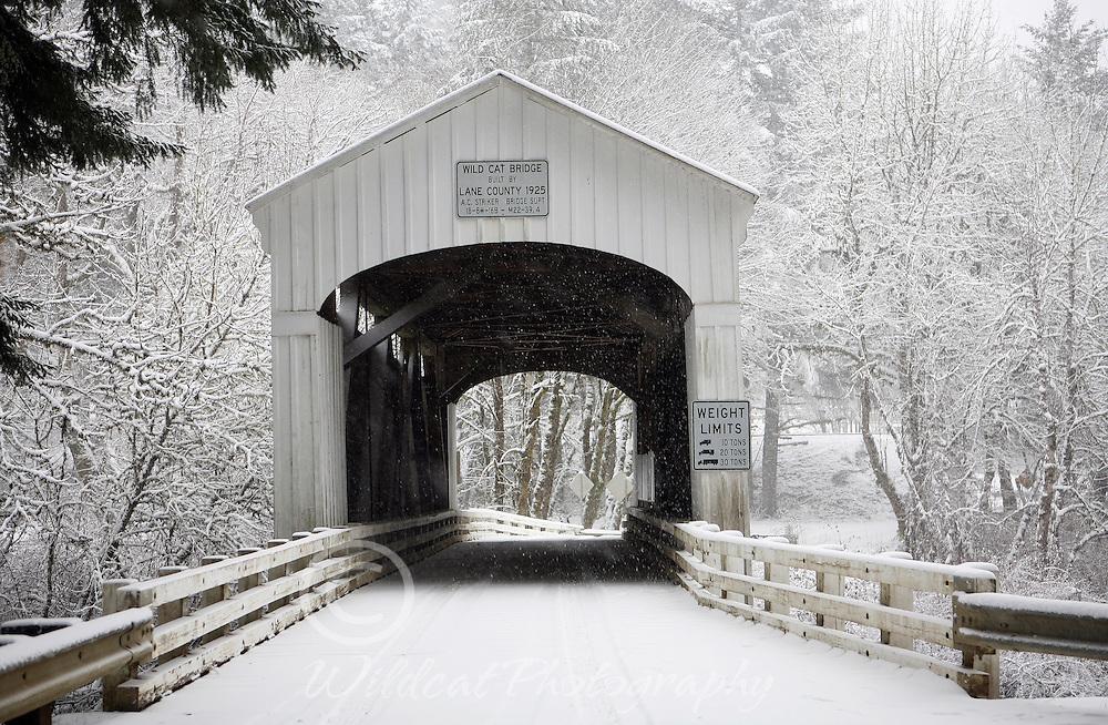 Wildcat Covered Bridge in White