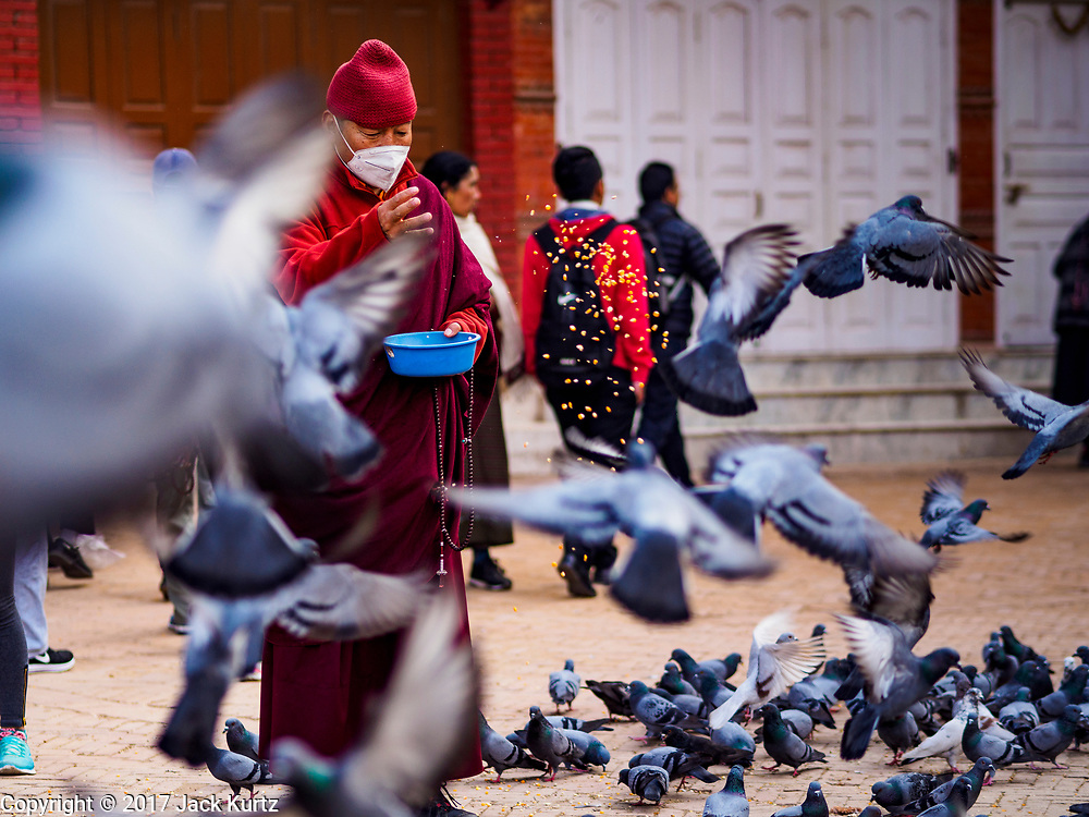 17 MARCH 2017 - KATHMANDU, NEPAL: A Buddhist monk feeds pigeons in a plaza at Boudhanath Stupa in Kathmandu. It is the holiest site in Nepali Buddhism. It is also the center of the Tibetan exile community in Kathmandu. The Stupa was badly damaged in the 2015 earthquake but was one of the first buildings renovated.      PHOTO BY JACK KURTZ