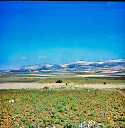 Israel vacation, 1971<br /> <br />  Photos taken by George Look.  Image started as a color slide.