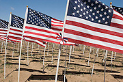 Memorial Day Field of Flags, Questa, New Mexico<br />