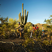 Mountain bikers take to the trail before sunset in the high desert of North Scottsdale, Arizona