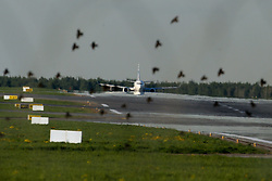 May 28, 2017 - A flock of birds flies over the runway as a Boeing-737 jet prepares to depart Vnukovo Airport, Moscow, Russia  (Credit Image: © Russian Look via ZUMA Wire)