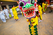 24 SEPTEMBER 2014 - BANGKOK, THAILAND:  A member of a youth lion dance troupe performs at the Thian Fah Shrine in Bangkok's Chinatown. His troupe was performing on the streets of Chinatown and soliciting donations from passers by. The Vegetarian Festival is celebrated throughout Thailand. It is the Thai version of the The Nine Emperor Gods Festival, a nine-day Taoist celebration beginning on the eve of 9th lunar month of the Chinese calendar. During a period of nine days, those who are participating in the festival dress all in white and abstain from eating meat, poultry, seafood, and dairy products. Vendors and proprietors of restaurants indicate that vegetarian food is for sale by putting a yellow flag out with Thai characters for meatless written on it in red.    PHOTO BY JACK KURTZ