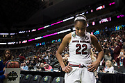 NCAA Women's Final Four game between South Carolina and Stanford at the American Airlines Center in Dallas, Texas on March 31, 2017.  (Cooper Neill)