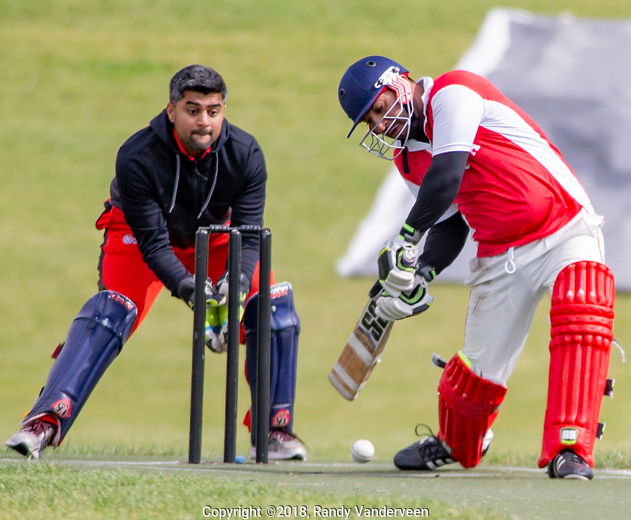 Photo Randy Vanderveen<br /> Grande Prairie, Alberta<br /> 2018-09-01<br /> Max Singh, a batsman for Grande Prairie protects the wicket as he hits the bowled ball during a Saturday afternoon game against Fort McMurray.