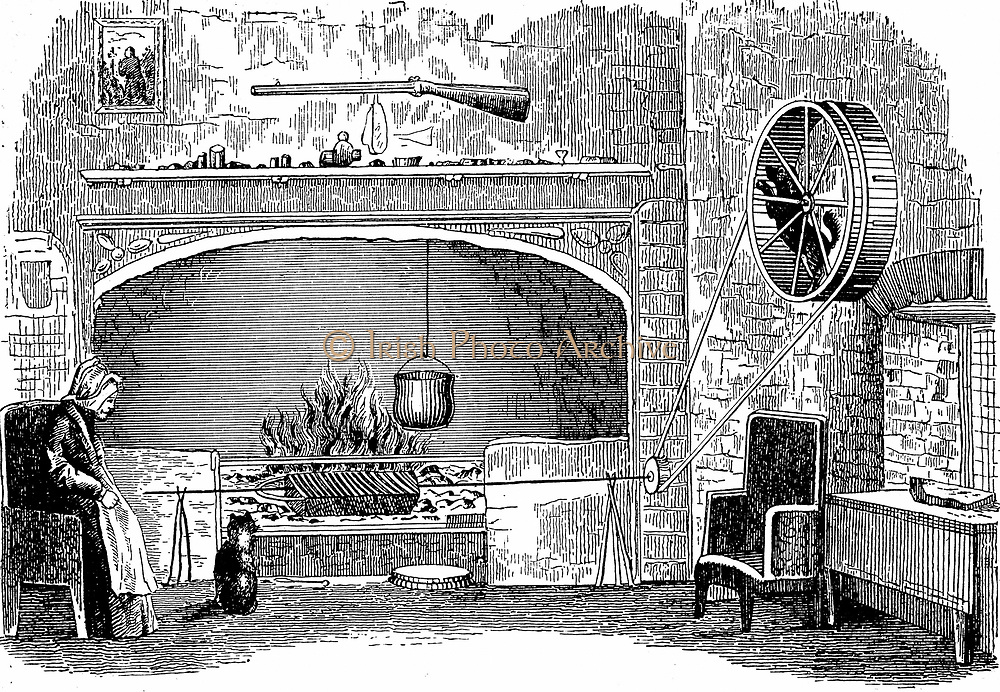 Turnspit dog at work. These short-legged dogs were bred especially to work in wheels turning cooking spits. By 1800 the breed had almost disappeared.  Wood engraving c1880