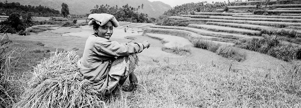 Rice Farmer and her field, Bali, Indonesia, April 2000