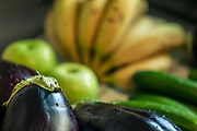 Fruit and vegetables (Bananas and aubergines) are washed and disinfected before entering the house. This hygienic practice has been implemented worldwide to combat the COVID-19 virus