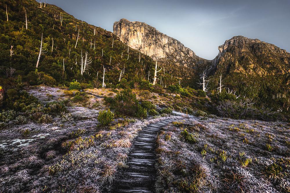 Sunrise at the track to  Frenchman's Cap, Franklin-Gordon Wild Rivers National Park, Tasmania