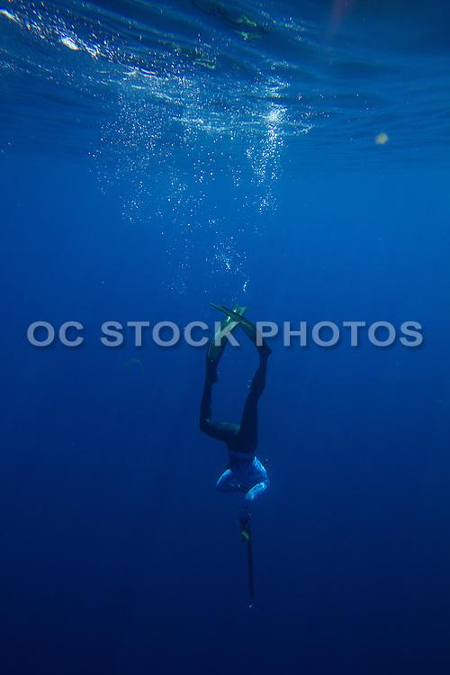 Deep Diving in the Pacific Ocean of Orange County