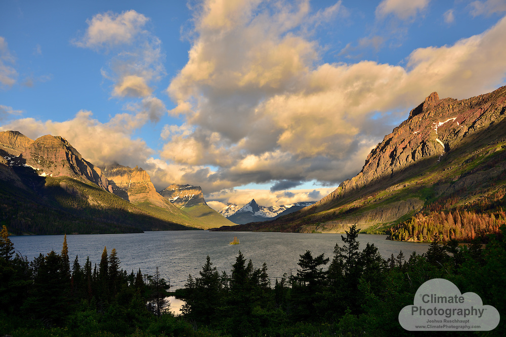 Saint Mary Lake, at sunrise.<br /> <br /> Glacier National Park, Montana, is a spectacular National Park.  I personally love the topography so much because it reminds me of home, Yosemite National Park, California.  Steep granite cliffs, graceful waterfalls, glacial lakes, grand forests, and remote access.  Polebridge is my location of choice to stay while visiting.  <br /> <br /> Very near Kintla Lake is a vibrantly green wetland that I enjoy visiting, and this time had the delightfully populated by a couple of deer peeking above the tall reeds.  Inquisitive as to my presence and activities photographing them, they would periodically and momentarily dedicate an eye to a click of my camera, or a re-position of my body.  <br /> <br /> Threats to deer and wildlife in Montana are described in this December 2015 article by the Billings Gazette: http://billingsgazette.com/lifestyles/recreation/climate-change-effects-revealed-in-montana/article_9c8ff925-400e-51e4-8fdb-bedcc8210c5c.html.  And, of course, the glaciers in Glacier National Park are disappearing and will be completely gone in just a few decades.