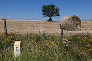 miles stone on a road, landscape of aubrac after the harvest, france  /  borne kilometrique , paysage de  l aubrac apres la moisson , France