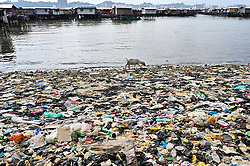 A goat searches food, into the plastic rubbish next to floating villages around Gaya Island, on August 5, 2019 near Kota Kinabalu city, State of Sabah, North of Borneo Island, Malaysia. Photo by Emy/ABACAPRESS.COM