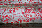 The National Covid memorial wall, a sea of red love hearts remembering all those who have died due to the COVID-19 pandemic on the 25th of May 2021 on the south bank in London, United Kingdom. Over 150,000 people have lost their lives in the United Kingdom due to the pandemic, the wall is a space for them to be remembered. (photo by Andrew Aitchison / In pictures via Getty Images)