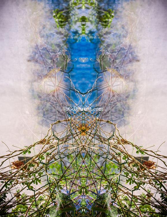 Inner Space Series 17