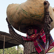 Indian woman carrying goods on head at a Jaipur market