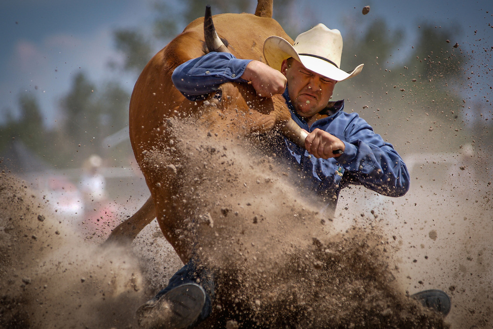 WILL SCOGGINS of Mt. Vernon, Texas competes in the Steer Wrestling event at Cheyenne Frontier Days.