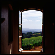 The view of the vineyards and of Oregon Wine Country from one of the windows in the tasting room at Domaine Drouhin Winery