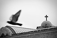 Beirut, Lebanon - March 10, 2011: A bird flies past St. George Orthodox Cathedral in Beirut, Lebanon.