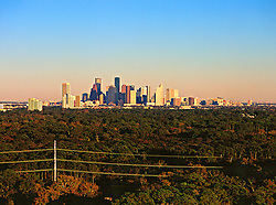 Houston, Texas skyline with trees in foreground.
