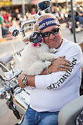 A biker hugs his poodle dressed in a Harley hat and glasses alongside Main Street during the 74th Annual Daytona Bike Week March 8, 2015 in Daytona Beach, Florida. More than 500,000 bikers and spectators gather for the week long event, the largest motorcycle rally in America.