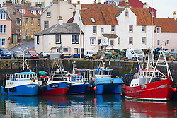 Pittenweem, Scotland, UK. 15 January 2020. Fresh shellfish, crab and lobster landed this morning at Pittenweem harbour in Fife. Fisherman Nick Irvine has two boats that catches shellfish, shrimp, velvet crab, brown crab and lobster. Much of his catch is exported to Asia and is busy at this time of the year because of upcoming Chinese New Year which increases demand and prices. This has helped to offset problems exporting into the EU because of new regulations. Pic; views of fishing boasts in harbour.  Iain Masterton/Alamy Live News