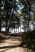 Pristine beaches of the Andaman