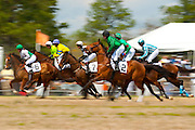 2  April, 2011:  Runners jump off in the second race of the day, the Camden Plate Maiden Hurdle race.