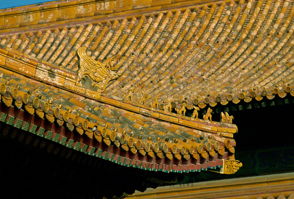 Roof tiles and decoration in Forbidden City, Beijing, China
