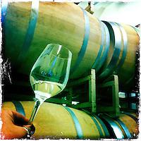 25 February 2012: PlumpJack Hungarian Oak Pinot barrel wine tasting Oakville, Napa, California.  iPhone Stock Photo