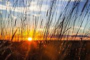 Sun setting in southern Wyoming.
