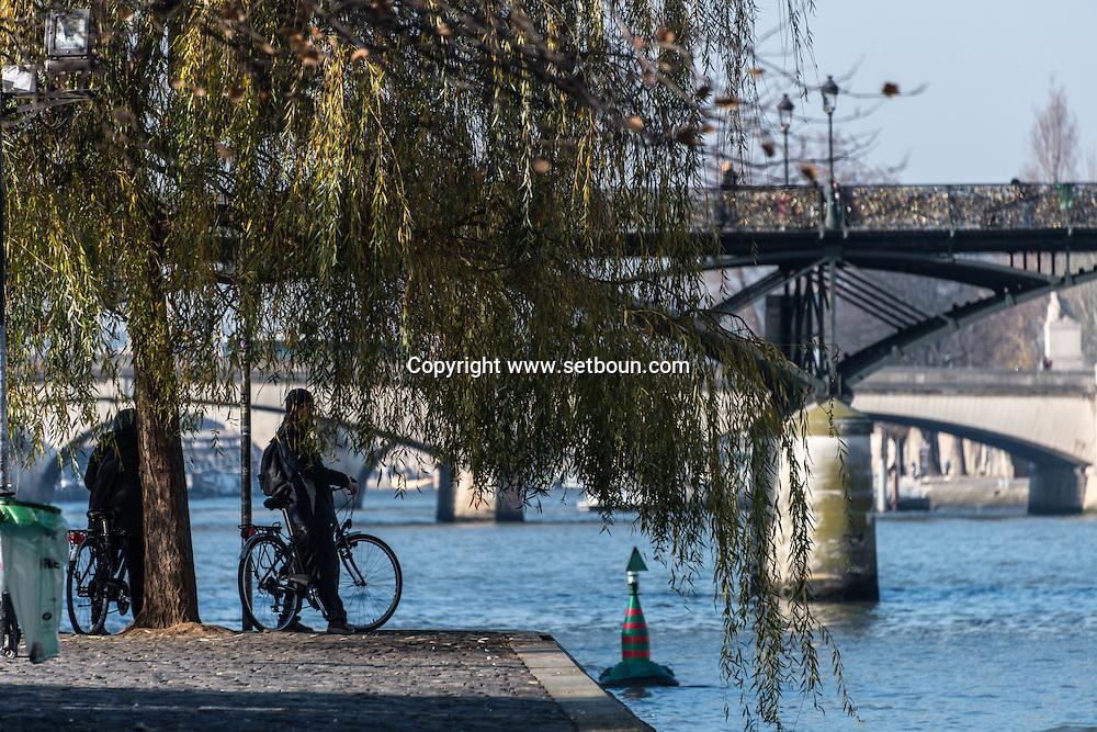 France. Paris. 1st district. Vert galant park on city island . Seine river / Jardin du vert galant a la pointe de l'ile de la cite