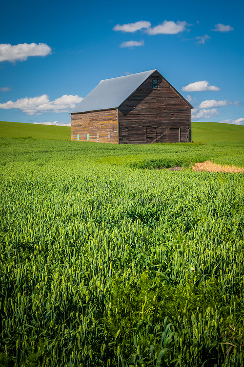 Farm bulding in the Palouse region of eastern Washington state, USA