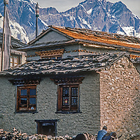 A Sherpa yak herder harnesses his animals at Tengboche Monastery, a spiritual center for the Sherpa people of Nepal.  This picture was shot in 1986 before the monastery was destroyed in an 1989 electrical fire and subsequently rebuilt in a more modern form. Mpunt Everst rises in the background.