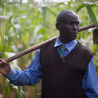 Jumanne Abdallah, champion of conservation agriculture on his farm in Tarime, Mara, Tanzania. Mr Abdallah has planted 1,700,000 trees, mainly Eucalyptus and Grevillea but also leguminous species for firewood, forage and nitrogen-fixing green manure.