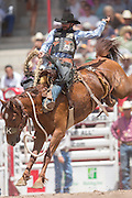 Saddle Bronc rider Wade Sundell hangs on to Ole One Eye at the Cheyenne Frontier Days rodeo at Frontier Park Arena July 24, 2015 in Cheyenne, Wyoming. Frontier Days celebrates the cowboy traditions of the west with a rodeo, parade and fair.