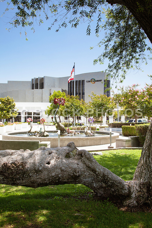 Heritage Tree and the Amaryllis Fountain at Cerritos Civic Center